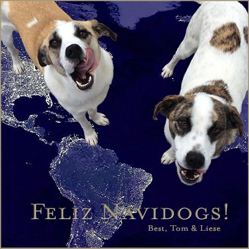 FelizNavidogs2013 copy